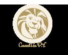 Caramel Lion Taalcorrectie Nederlands